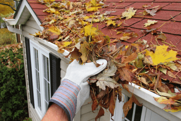 fall-home-maintenance-magnes-group